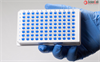 GeneQuery™ Mouse cDNA Evaluation Kit, Deluxe, 100 reactions